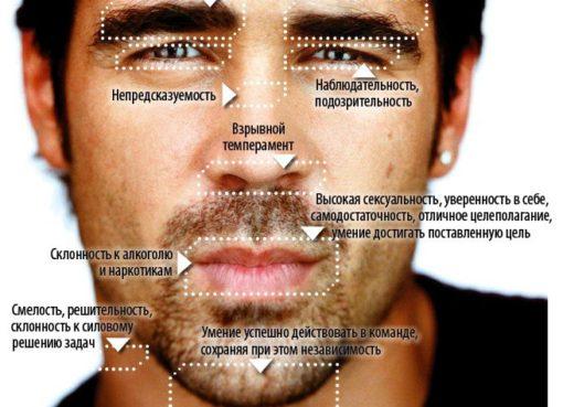 английском характеристика черт лица картинки даже все